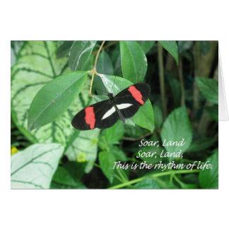 Beautiful butterfly soaring, landing! card