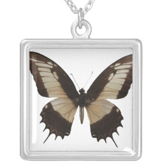 Beautiful Butterfly Square Pendant Necklace