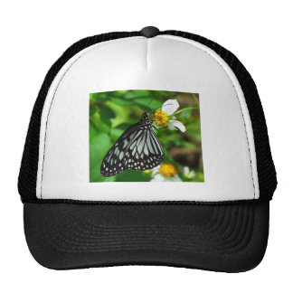 BEAUTIFUL BUTTERFLY TRUCKER HAT