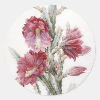 Beautiful Cactus Bloom Watercolor Art Classic Round Sticker