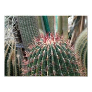 Beautiful Cactus Card