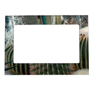Beautiful Cactus Magnetic Frame