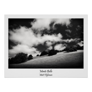 Beautiful California Hillside in Black and White Poster