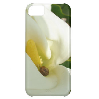 Beautiful Calla Flower On Green Natural Background Case For iPhone 5C