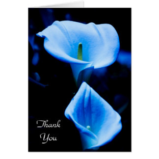 Beautiful Calla Lilies Pair Bathed in Blue Light Card