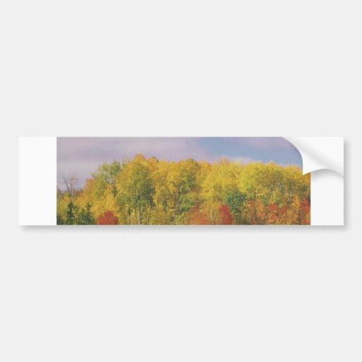 Beautiful CANADIAN Fall Season : LOWPRICE GIFTS Car Bumper Sticker