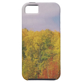 Beautiful CANADIAN Fall Season : LOWPRICE GIFTS iPhone 5 Cases
