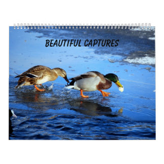 Beautiful Captures Calendar