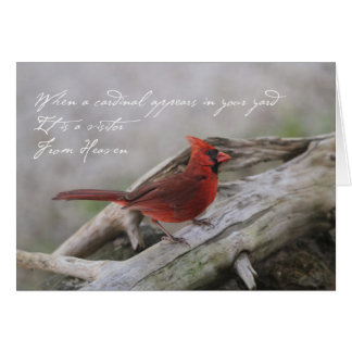 Beautiful cardinal with saying card
