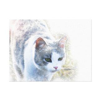 Beautiful Cat Canvas Art