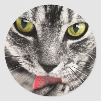 beautiful cat feline eyes and tongue lick classic round sticker