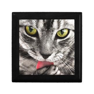 beautiful cat feline eyes and tongue lick keepsake box