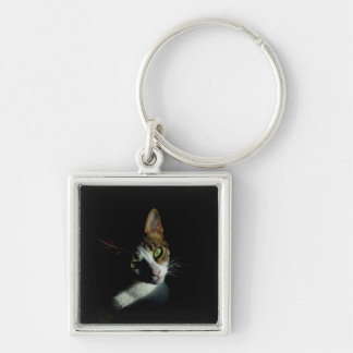 Beautiful Cat photo Keychain