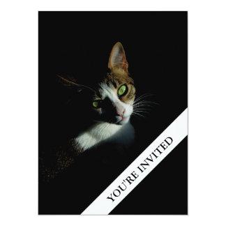 Beautiful Cat Simple Plain invitation