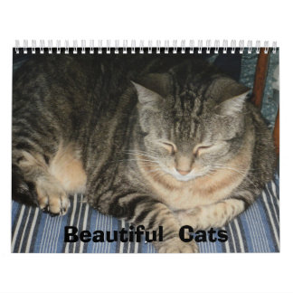 Beautiful Cats 2013 Calendar