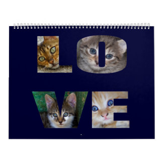 Beautiful Cats For All Who Love Them 2017 Calendar