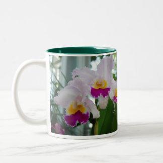 Beautiful Cattleya Orchid Two-Tone Coffee Mug