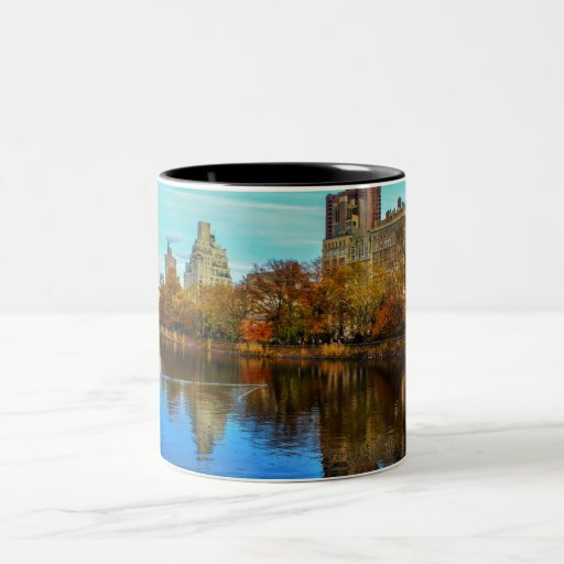 Beautiful Central Park NYC Landscape Mugs