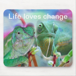 Beautiful chameleons mouse pad