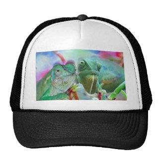 Beautiful chameleons trucker hat