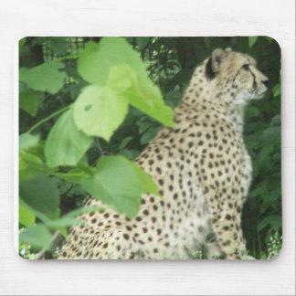 Beautiful cheetah mouse mats