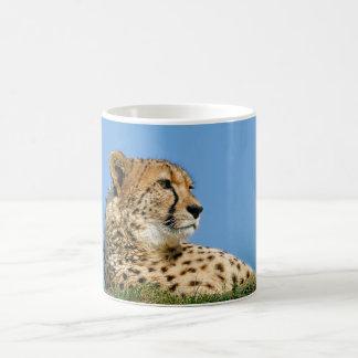 Beautiful Cheetah - Mug