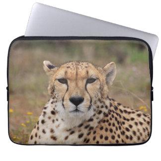 Beautiful cheetah portrait laptop computer sleeves