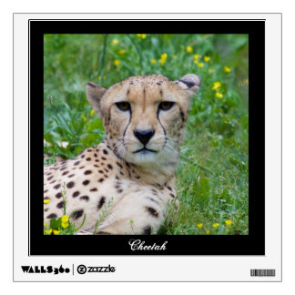 Beautiful Cheetah Wall Decal