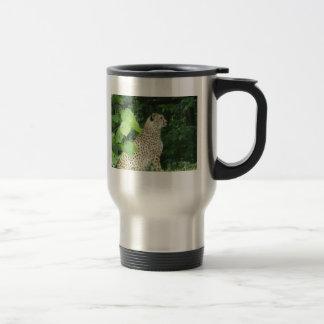 Beautiful cheetah's mugs
