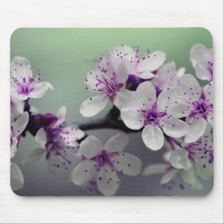 Beautiful Cherry Blossom Mouse Pad