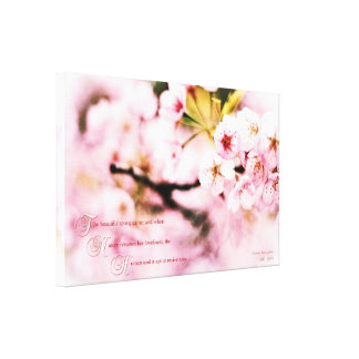 Beautiful Cherry Blossoms Spring Nature Loveliness Canvas Print