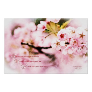 Beautiful Cherry Blossoms Spring Nature Loveliness Poster