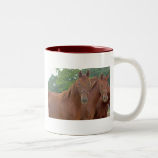 Beautiful Chestnut Bay Brown Horses Two-Tone Coffee Mug