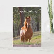 Beautiful chestnut horse card