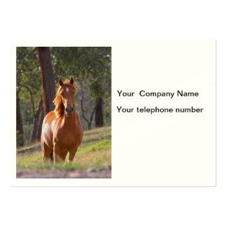 Beautiful chestnut horse phot custom business card
