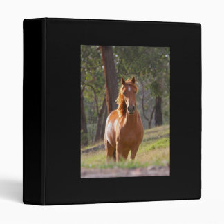 Beautiful chestnut horse photo album binder