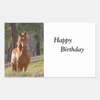 Beautiful chestnut horse photo happy birthday sticker