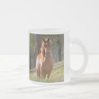 Beautiful chestnut horse photo portrait, gift frosted glass coffee mug
