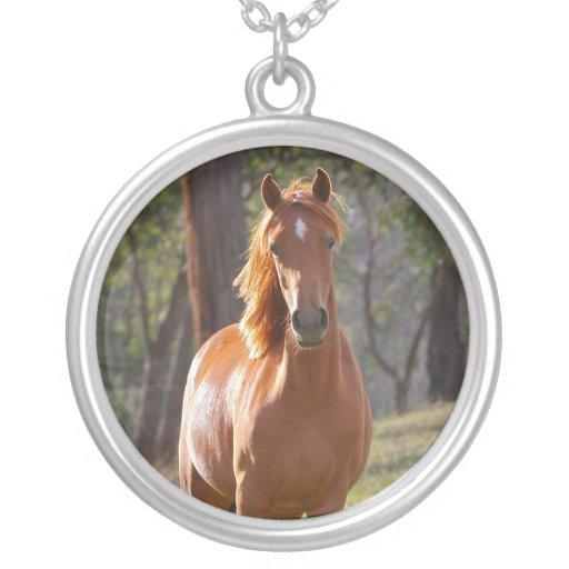 Beautiful chestnut horse photo portrait, gift necklaces