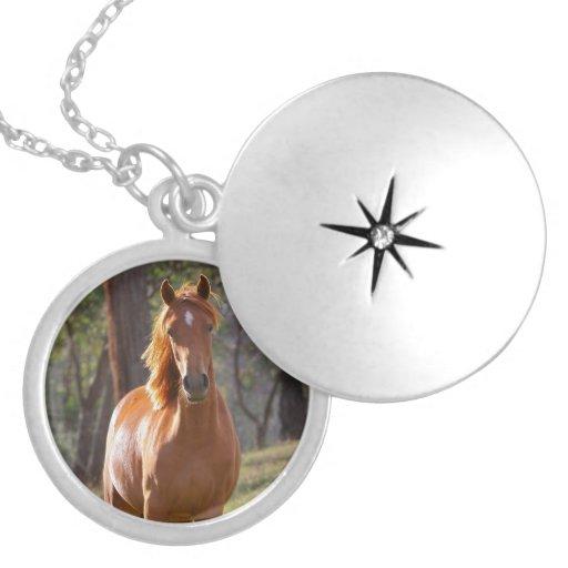 Beautiful chestnut horse photo portrait, gift pendants