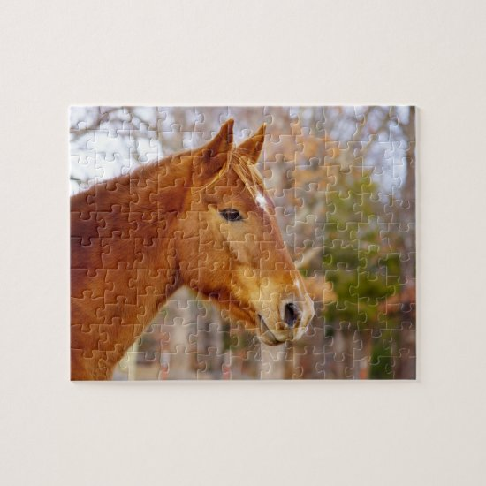 Beautiful Chestnut Horse Puzzle with Gift Box