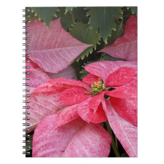Beautiful Christmas Poinsettia Photo Spiral Notebook