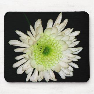 Beautiful Chrysanthemum Mouse Pad