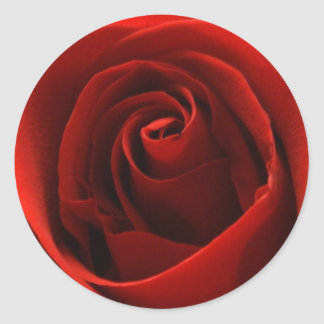 Beautiful Classic Red Rose Stickers
