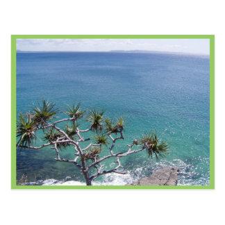 Beautiful Clear Sea Of Pandanus Postcard