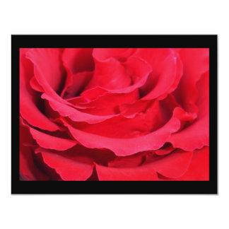 Beautiful Close Up Of Red Rose Petals Card