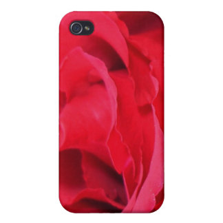 Beautiful Close Up Of Red Rose Petals iPhone 4 Cover