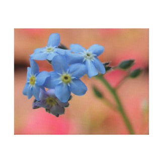 Beautiful close-up photo blue flowers canvas print