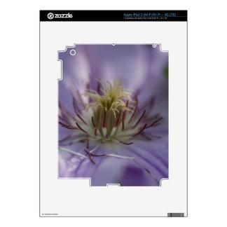 Beautiful Closeup of a Flower Skin For iPad 3