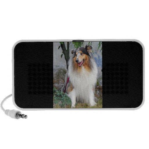 Beautiful Collie blue merle dog doodle speakers